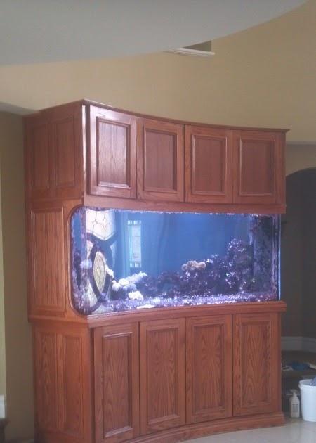 Giant aquariums 598 gallon custom setup for Fish tanks craigslist