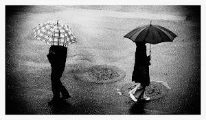 Perder el camino/extraviarnos de a dos/bajo la lluvia/las espaldas se miran/los ojos se cierran