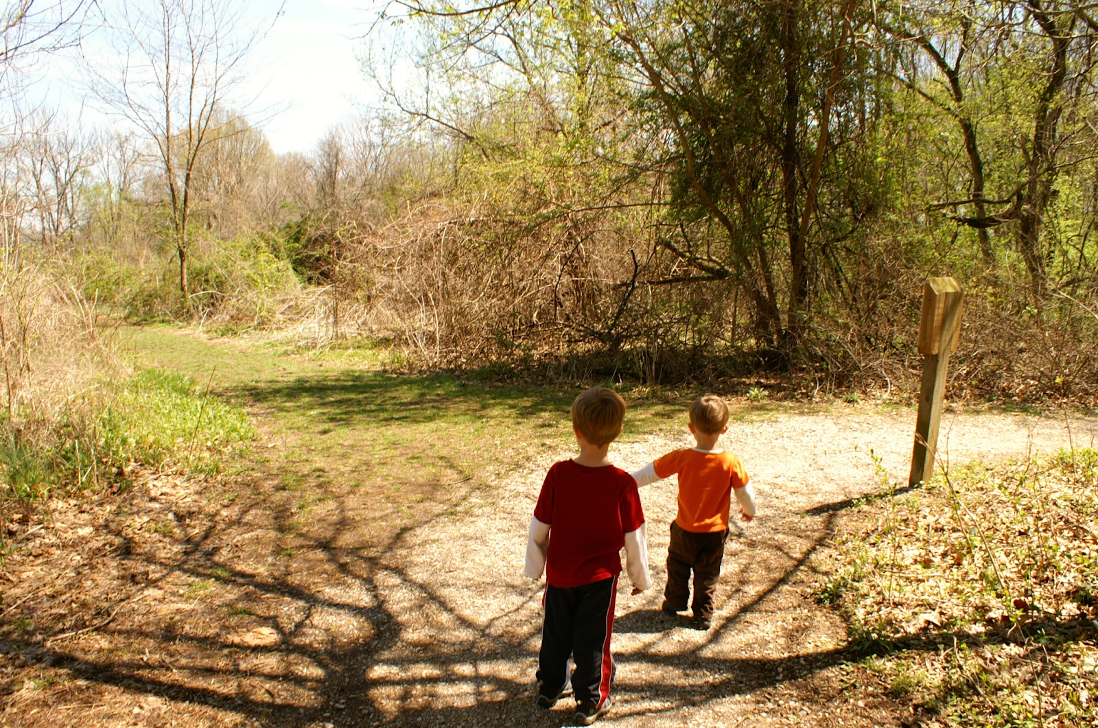 Two Tykes on a Hike: Trail Tale: Withrow Nature Preserve, Old Farm Loop