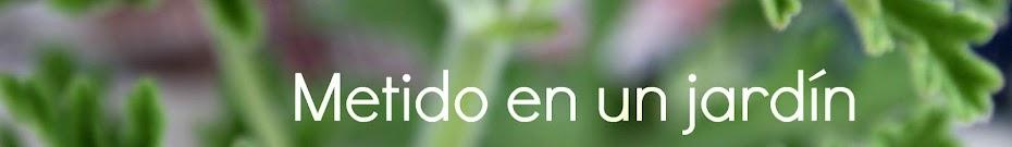 Me he metido en un jardín...