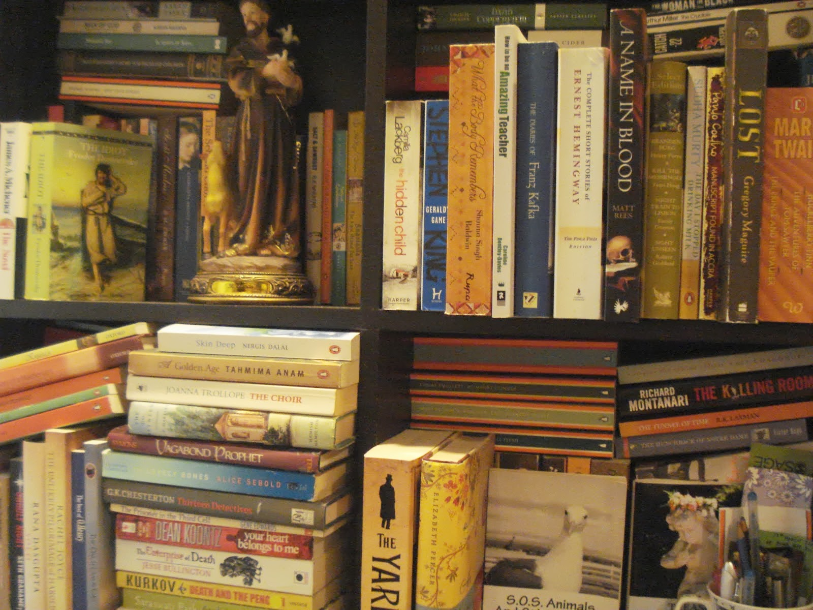 Fiza Pathan's Bookshelf