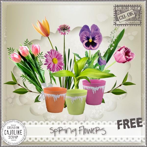 SPRING FLOWERS - CU Cajoline_springflowerscu