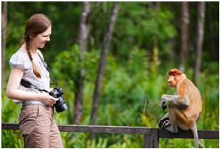 How To Become A Zoologist And Wildlife Biologist - Education ...