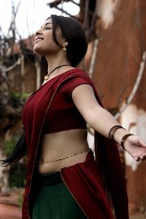 Richa Gangopadhyay in Saree Beautiful Pics Collection HQ