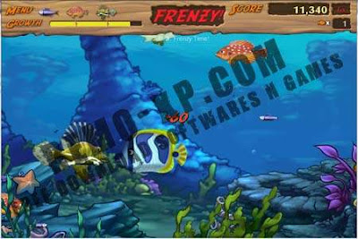 feeding frenzy registration code free download
