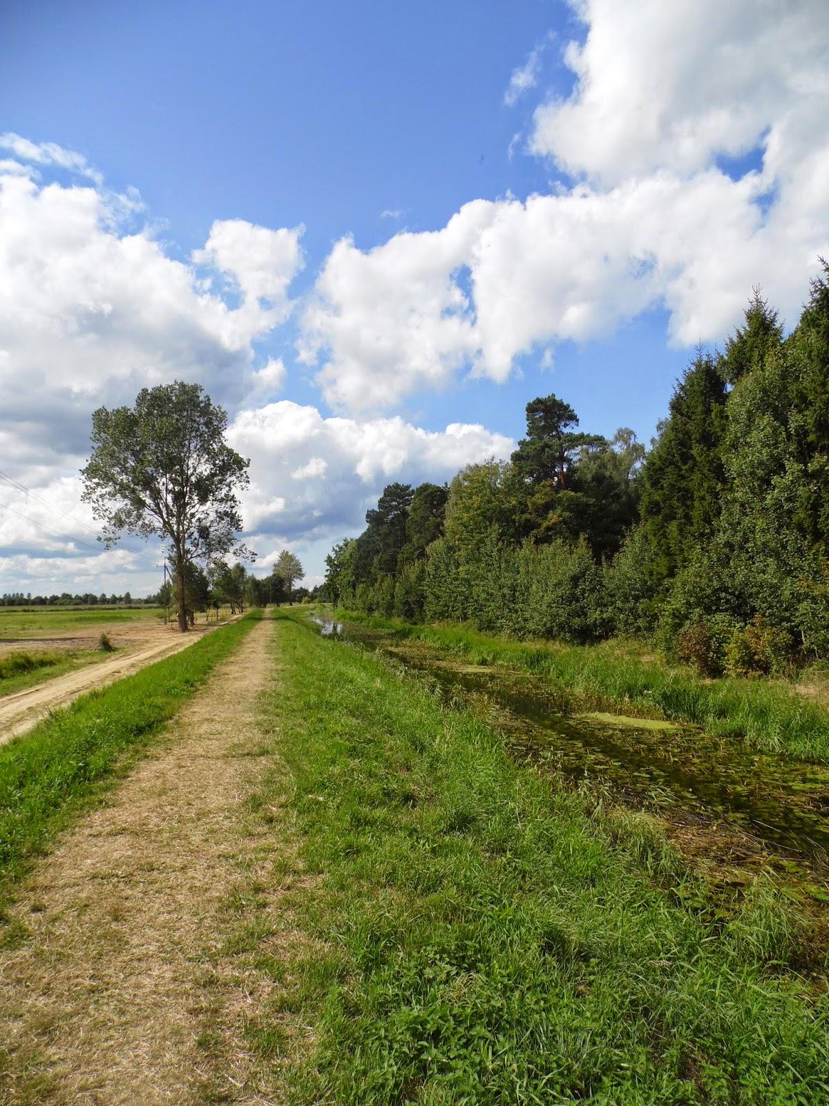Ścieżka prowadząca wzdłuż Czarnej Wody w Ostrowie, równolegle do brzegu Morza Bałtyckiego