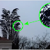 Watch Closely... It Looks Like A Normal Tree! But You Won't Believe What Was Caught On Camera By This Man.