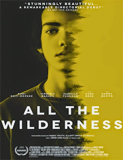 All the Wilderness (2014) [Vose]