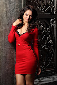 Shanvi latest Portfolio Photos-thumbnail-2