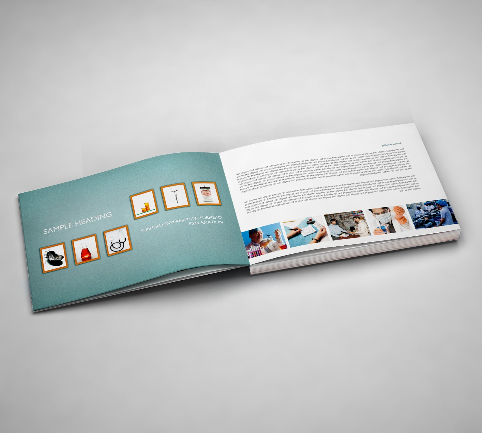 IBEF brand manual and coffee table book