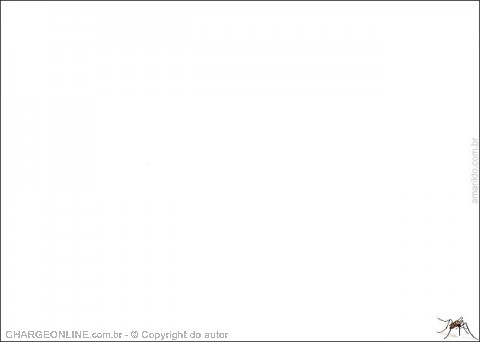 AUTO_amarildo3.jpg (480×342)