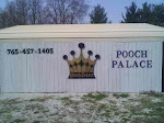 The Pooch Palace