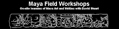 Maya Field Workshops -  Talleres de Campo Maya