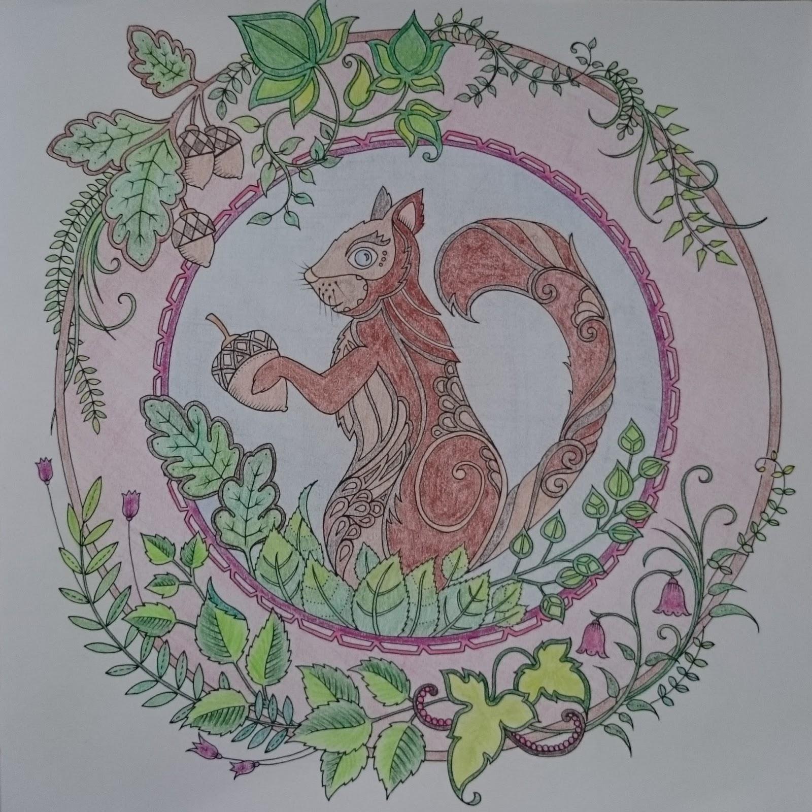 L écureuil