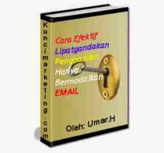 Download Ebook Panduan Bisnis Email Marketing