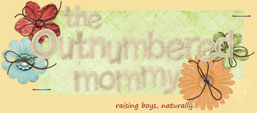 The Outnumbered Mommy