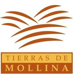 Tierras de Mollina