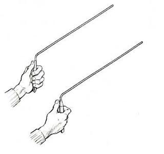L antene - rašlje