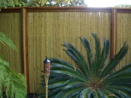 Bamboo Privacy Fencing7