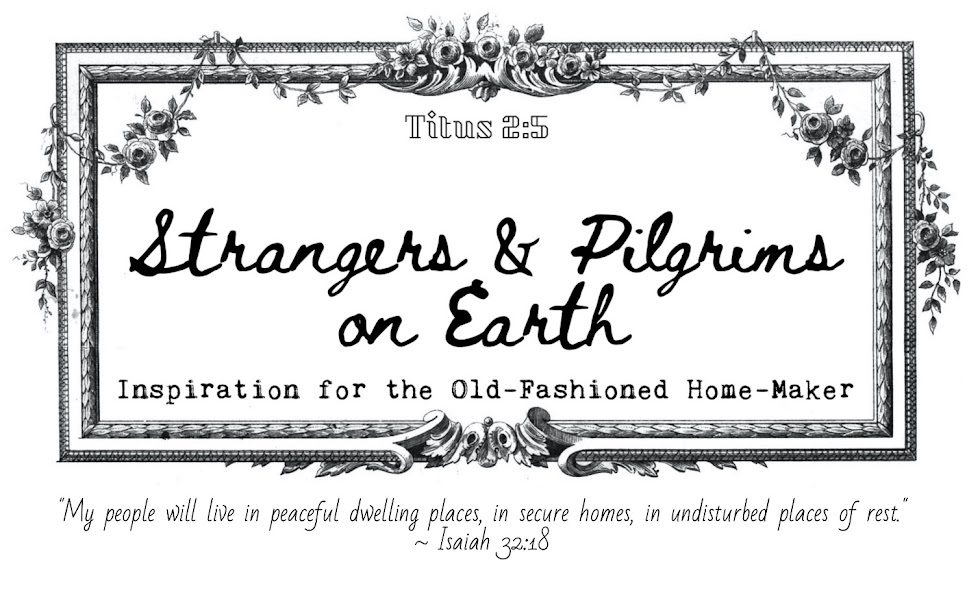Strangers & Pilgrims on Earth