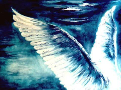 """""""Desde que em mim nasceste em noite calma/voou ao longe a asa da minh'alma"""" Florbela Espanca"""