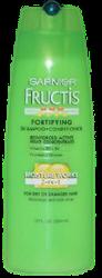 Garnier Fructis Shampoo 2 in 1