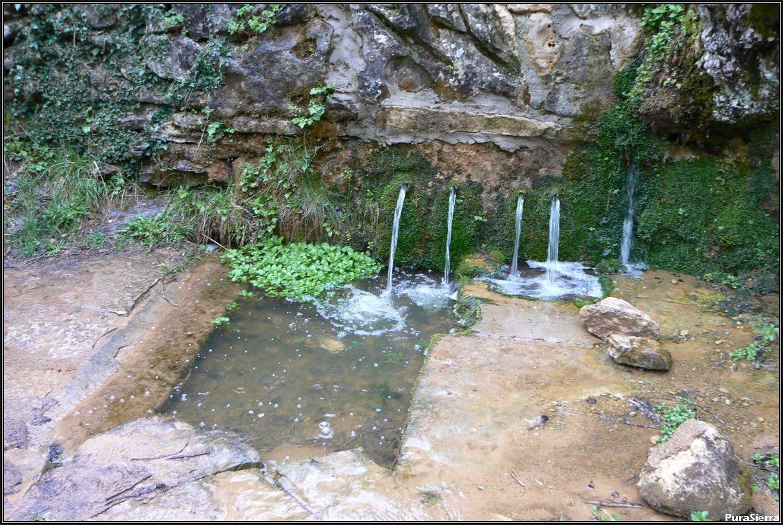 Fuente De La Tía Perra (Cuenca)