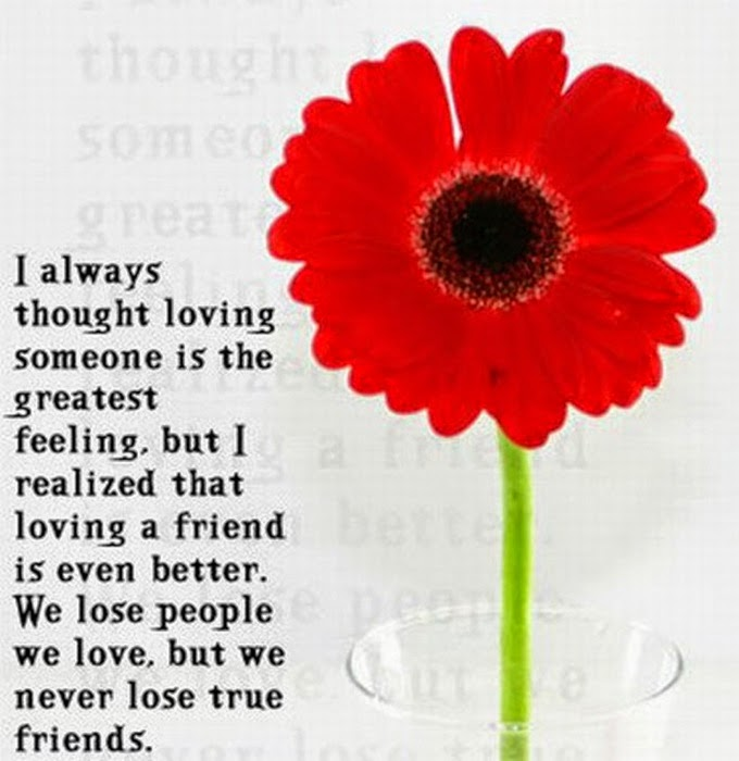 Flowers quotes friendship many flowers - Flowers that mean friendship ...