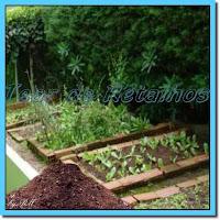 O adubo orgânico natural é uma alternativa boa e barata para fertilizar as plantas. E ainda contribui com a sustentabilidade do meio ambiente