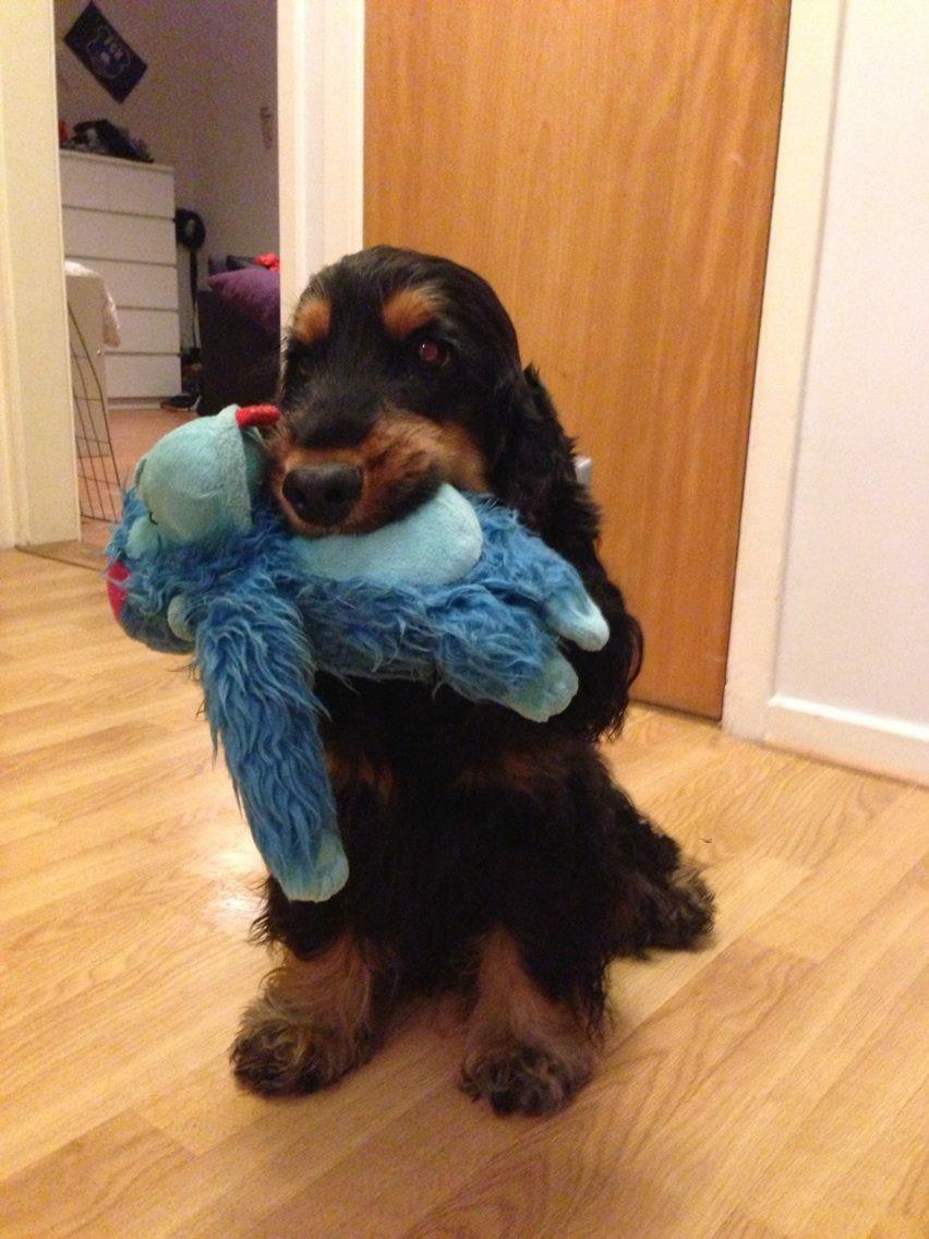 Ellie med sitt gosedjur