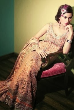 Pakistani Classic Bridal Dresses 2014