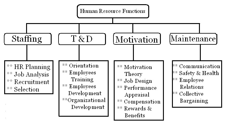 hr functions employee selection View chapter 7 foundations of employee selection from mgmt 317 at winona chapter 7 foundations of selection fundamentals of human resource management 10e, decenzo and robbins fundamentals of human.
