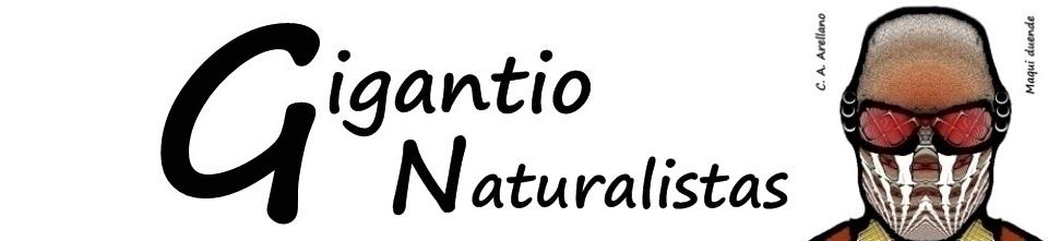 GIGANTIO: Naturalistas