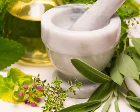 herbal untuk menjaga kelembaban kulit