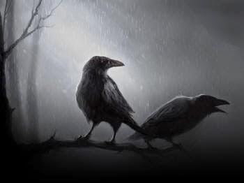 Los cuervos en los sueños