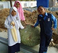 Durian terbesar di Malaysia ada di SKBD?