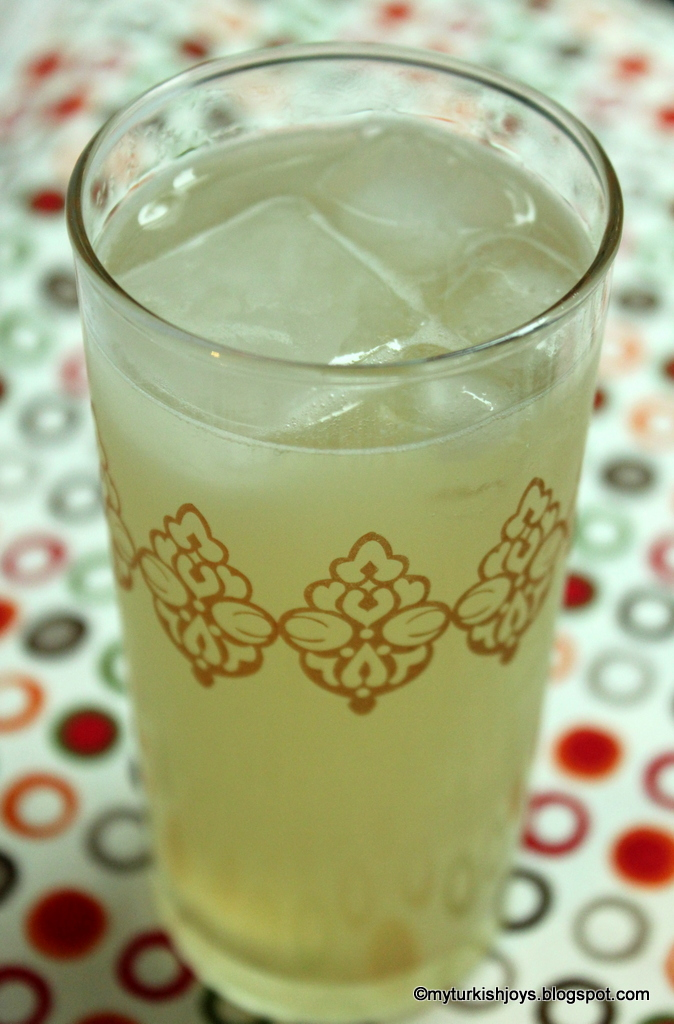 DIY: How to Make Homemade Ginger Ale ~ My Traveling Joys