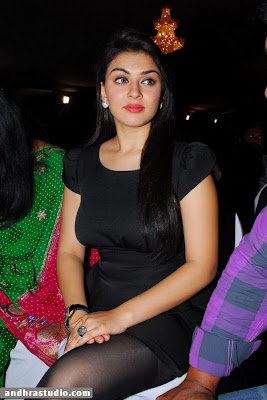 Hansika Motwani Sexy Photos In Black Transparent Outfit