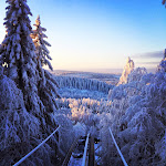 Joulun ja Uuden Vuoden viettoa Pohjois-Karjalassa
