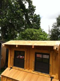 Custom Built Chicken Coop