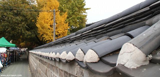 Muro con tejadillo tradicional coreano en otoño