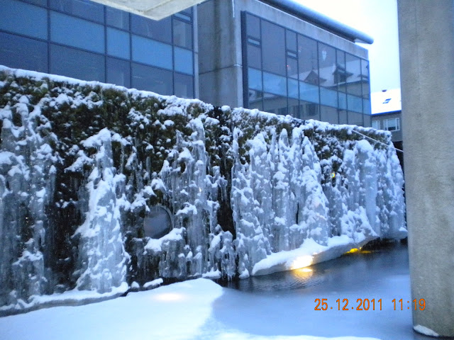 City center -water fall freezed