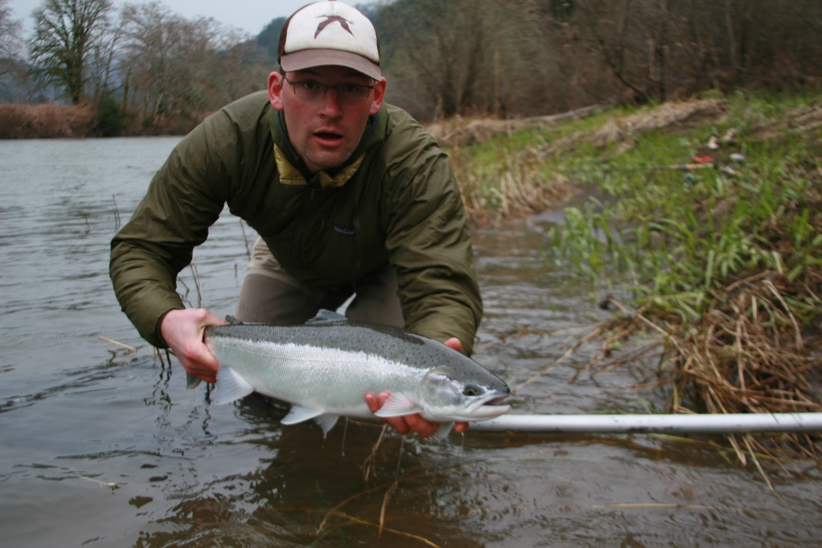 5012 oregon haus march steelhead fishing for Oregon steelhead fishing