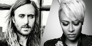 David Guetta Feat. Emeli Sande What Did I Do For Love Lyrics