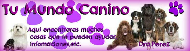 Tu mundo Canino