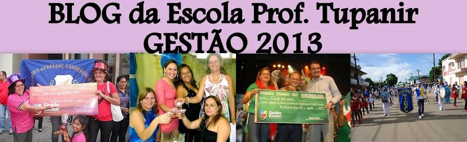 Tupanir Gestão 2013