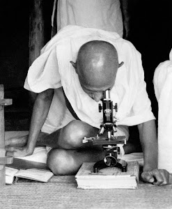 Gandhi the Scientist