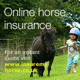 Horse Insurance Quotes