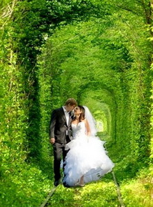 Tunnel of Love Ukraina