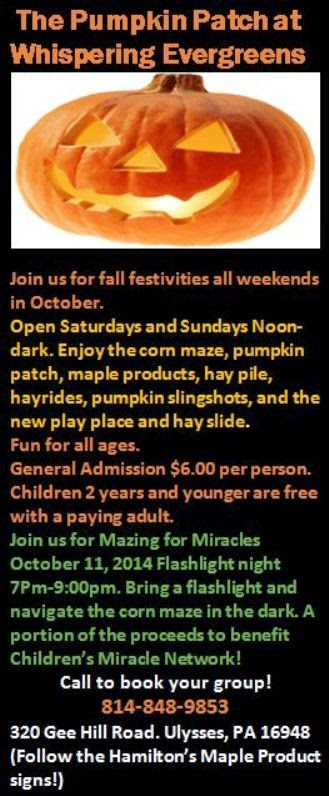 10-4/5 Pumpkin Patch, Ulysses
